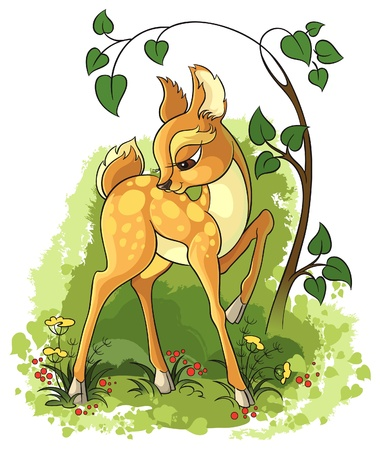 fawn: Young deer Illustration