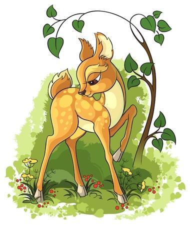 baby animal cartoon: Young deer Illustration