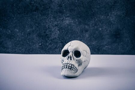 White Halloween skull toy