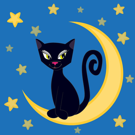 affectionate: Cute cat sitting on the moon