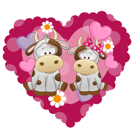 Two Cows on a background of heart  Vector