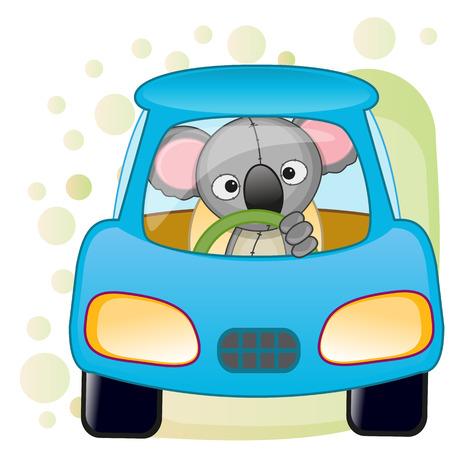 Cute Koala is sitting in a car  Vector