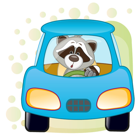 Cute Raccoon is sitting in a car