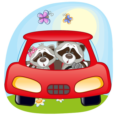 raccoons: Two Raccoons is sitting in a car