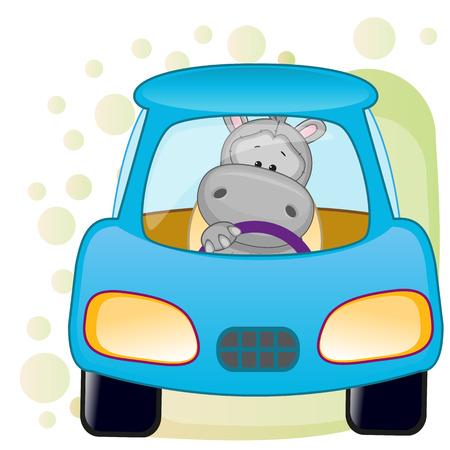 hipopotamo caricatura: Hipopótamo lindo se está sentando en un coche