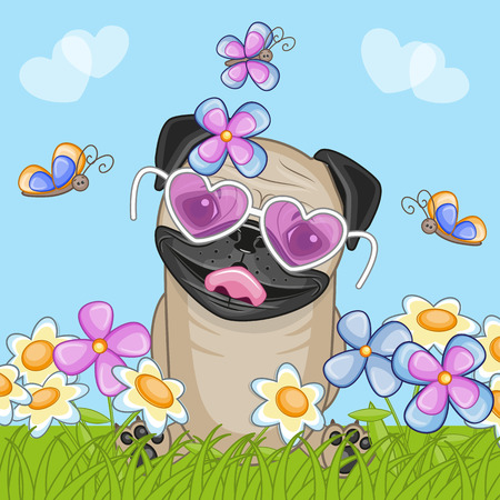 Pug Dog with flowers and butterflies