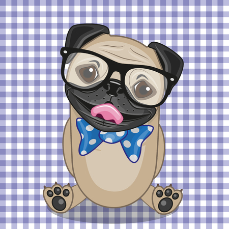 pug dog: Hipster Pug Dog on a plaid background Illustration