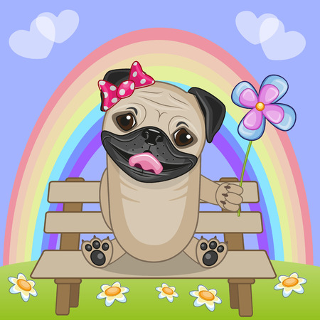 pug dog: Greeting card Pug Dog with flower
