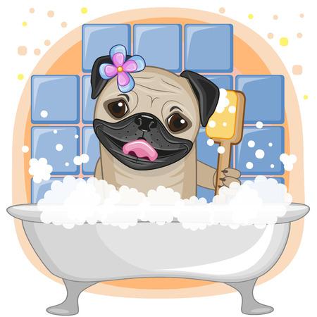 かわいい漫画バスルームでパグ犬
