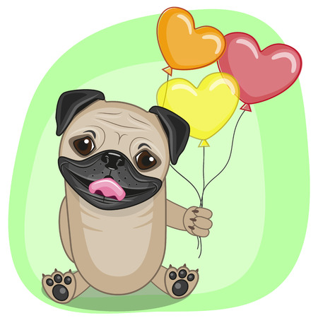 pug dog: Greeting card Pug Dog with balloons