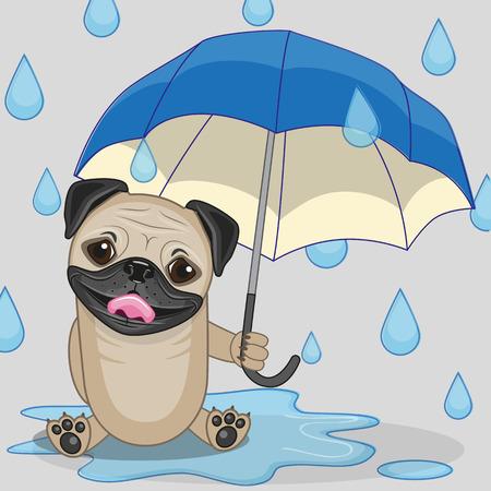 Grußkarte Mops-Hund mit Regenschirm Standard-Bild - 34568762