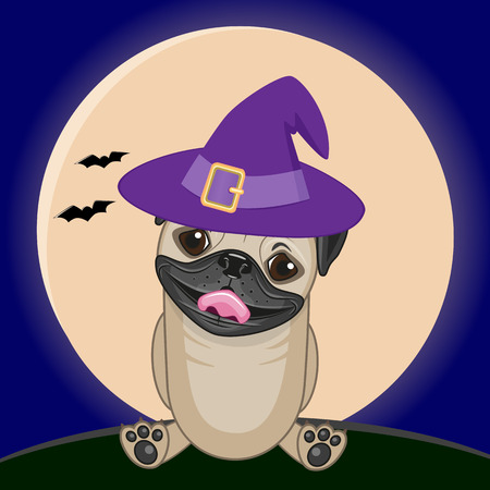 pug dog: Pug Dog in hat on the background of the moon