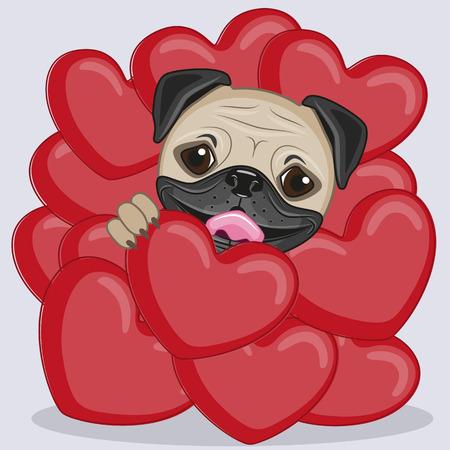 Valentine-Karte mit Pug-Hund in den Herzen Standard-Bild - 34568765