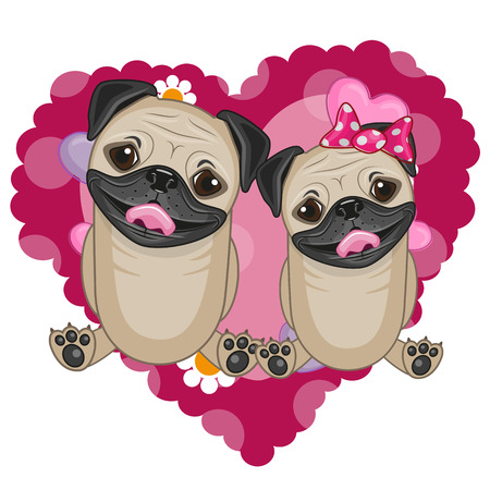 Two Pug Dogs on a background of heart
