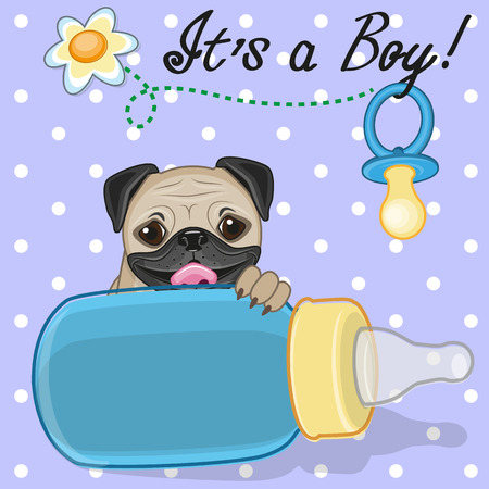 cartoons animals: Cute Pug Dog with feeding bottle