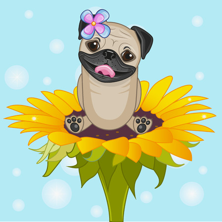 pug dog: Cute cartoon Pug Dog on the flower
