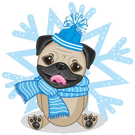 Pug Dog in hat on the background of snowflake Illustration