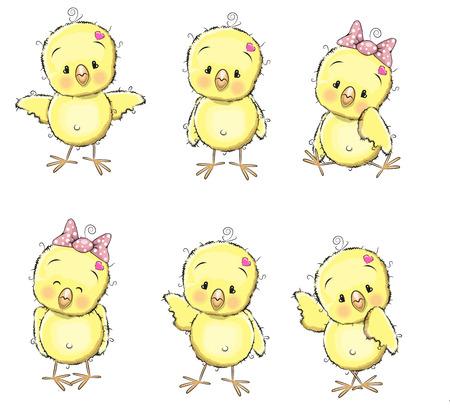 흰색 배경에 고립 된 6 귀여운 병아리