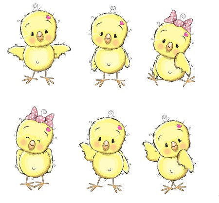 Six cute chicks isolated on a white background