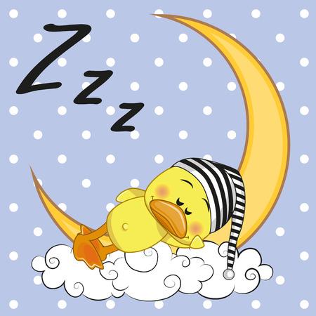 Cute Duck is sleeping on the moon