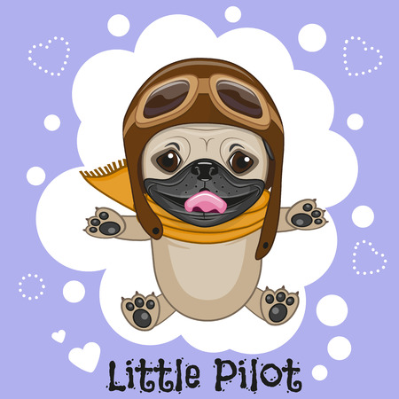 eyewear glasses: Cute cartoon Pug Dog in a pilot hat Illustration