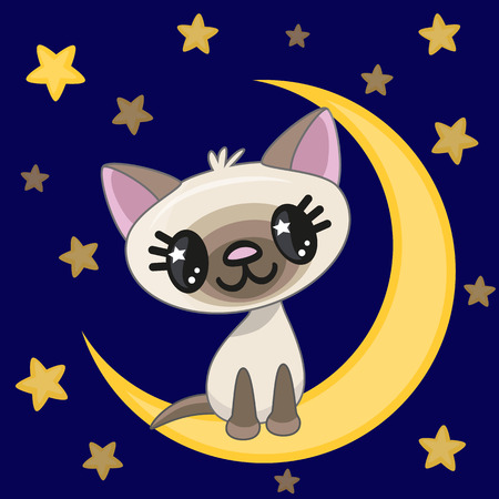 Cute Cat is sitting on the moon