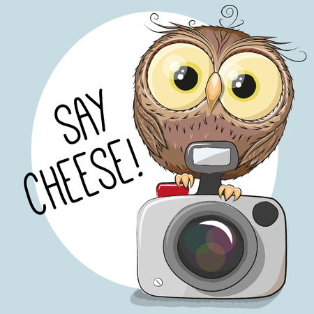 camera: Cute cartoon Owl with a camera on a gray background