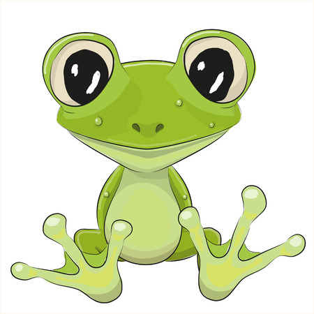 frog green: Cute Frog isolated on a white background