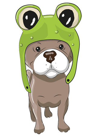 walking path: Cute Cartoon Dog in a froggy hat on a white background