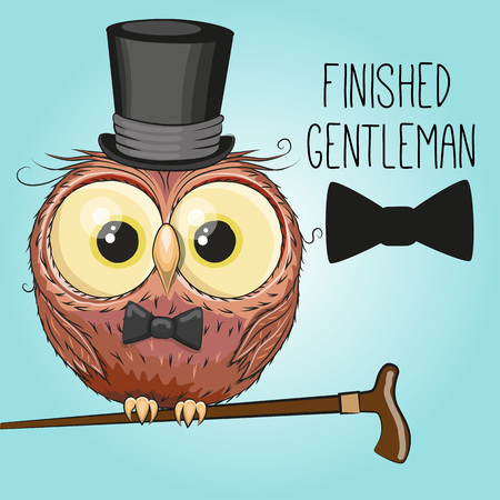owl illustration: Greeting card cute cartoon Owl in a hat