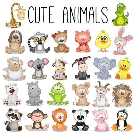 gato dibujo: Conjunto de animales divertidos sobre un fondo blanco