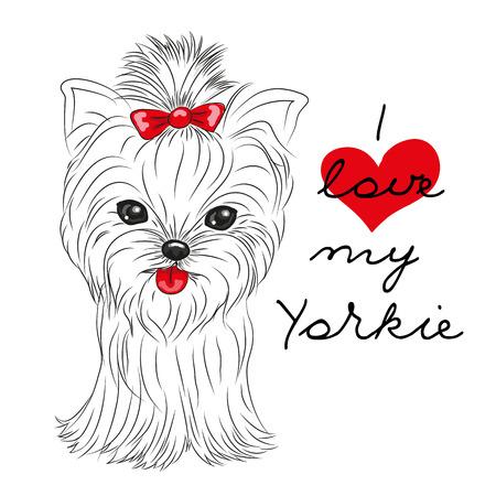 Leuke Yorkshire Terrier op een witte achtergrond Stock Illustratie