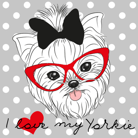 Cute Yorkshire Terrier on a dots background Çizim