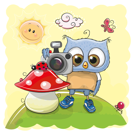 Cute cartoon Owl with a camera on the meadow