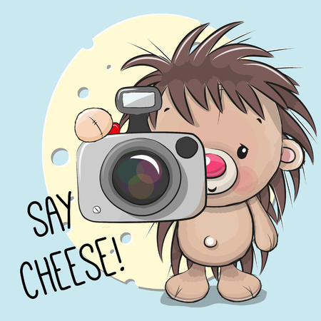 Cute cartoon Hedgehog with a camera on a cheese background