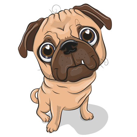 Cute Cartoon Pug Dog isolated on a white background Illustration
