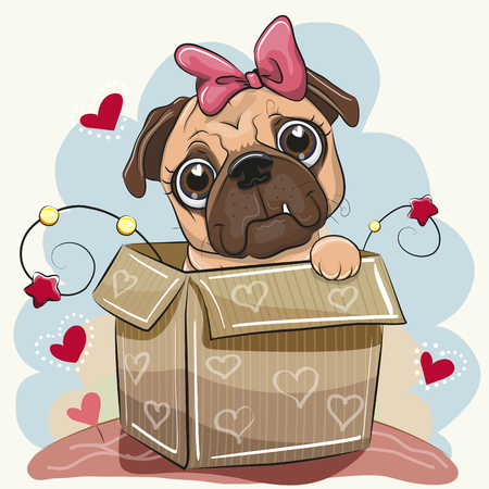 Birthday card with a Cute Cartoon Pug Dog girl in the box Illustration