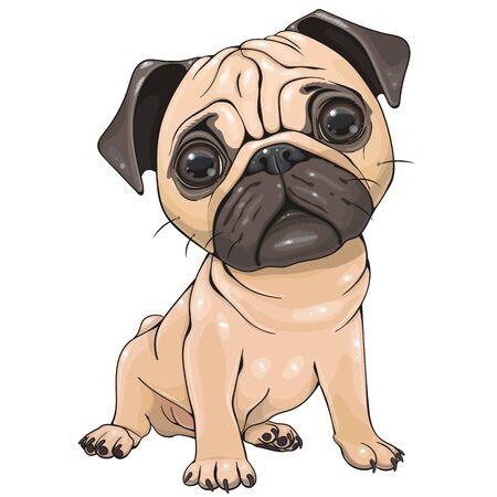 Cute Cartoon Pug Dog  isolated on a white background Çizim