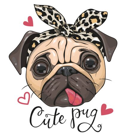 Head of Cartoon Pug Dog in a leopard scarf isolated on a white background