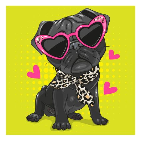 Cartoon Black Pug Dog with pink glasses and scarf isolated on a white background Ilustração