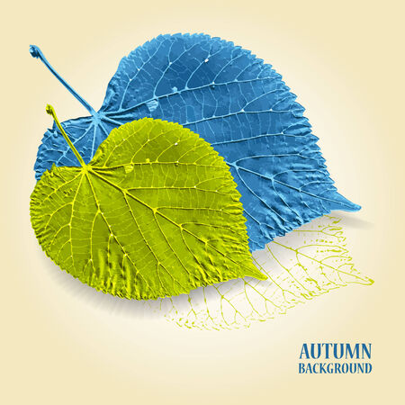 linden: Autumn background with leaves. Linden in blue and green. Written text on background.  Vector illustration.  Illustration