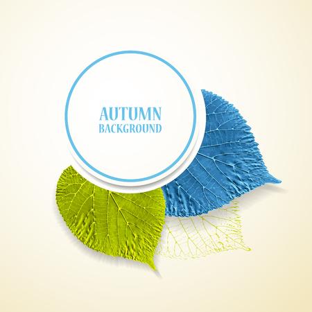 lindeboom: Herfst achtergrond met bladeren. Linden in blauw en groen. Vector illustratie.