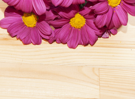 burgundy colour: frame with flowers in top - stock Stock Photo