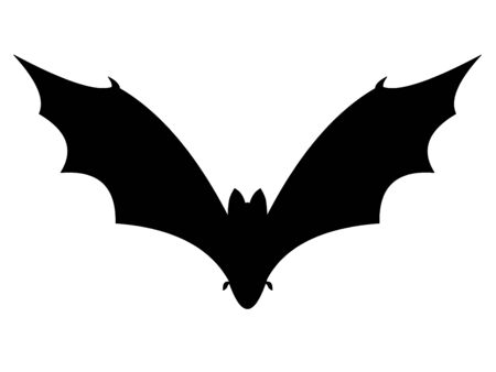 Bat on a white background