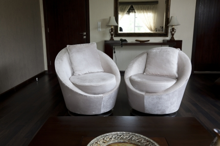 two sofa seats in apartment room photo