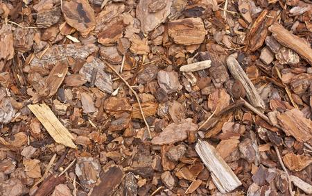 paillis: paillis de bois texture Banque d'images
