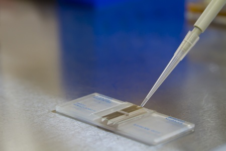 science procedure in lab pipette