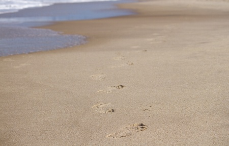 footmark: footprints along beach