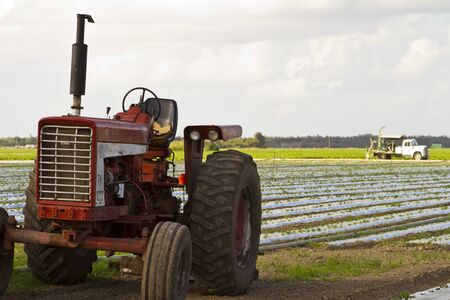 red tractor on farmland photo