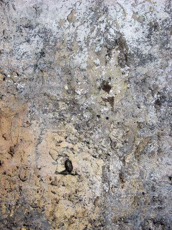 close-up of crannied plaster
